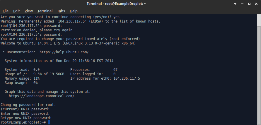 First login terminal